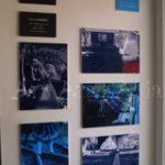 6/8(Sat)~ 6/14(Fri)「ao」展vol.3&「ナココ37号個展「Wonder Girl展」&「シオザワタケシ×紫」2人展が開催しました!!